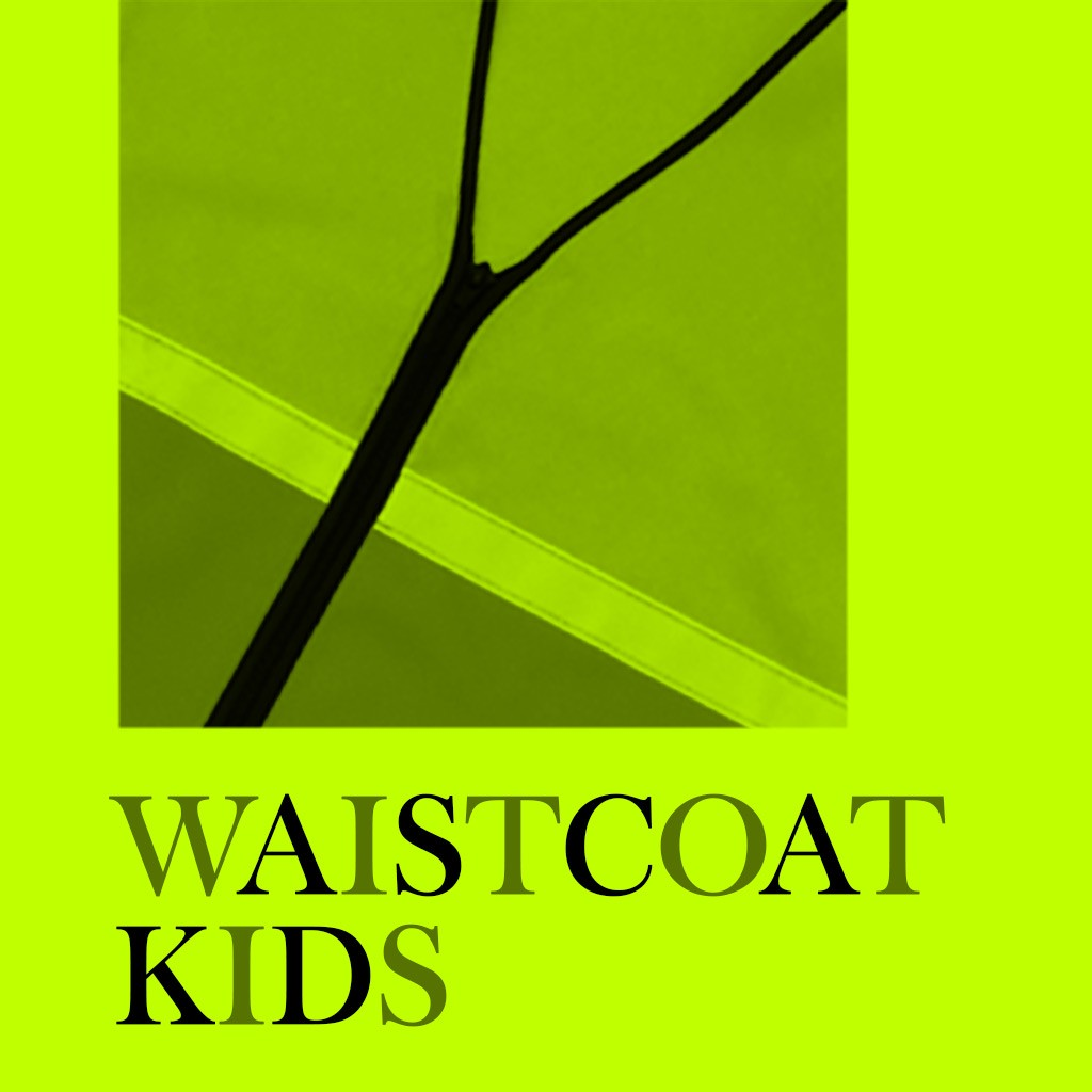 Hi-Viz Waistcoat - Kids Cover